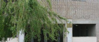 Школа села Елшанка Больше-Чесноковского филиала