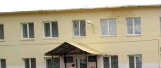 Школа села Старая Шентала